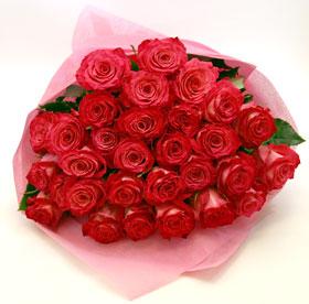 ピンク色のバラが華やかでキレイです