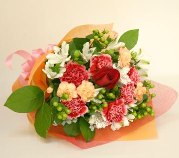 花束☆ハリス