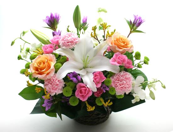 <引っ越し祝いの花>Flowers-Do!おまかせアレンジ