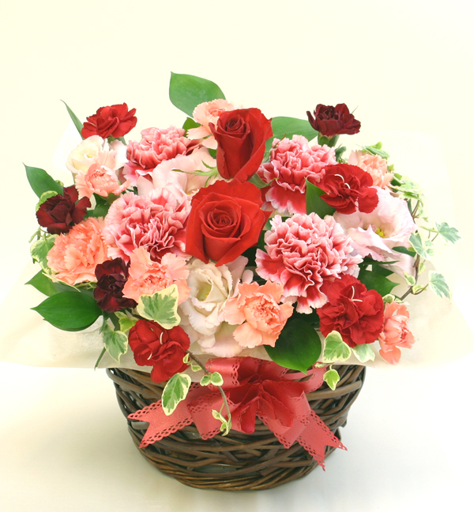新築祝いの花 フラワーアレンジメント *ヴァネッサ*