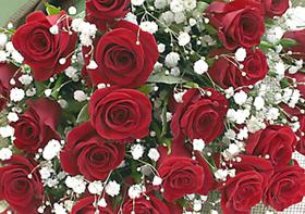 *バラの花束*レッドがとても鮮やかでキレイ!