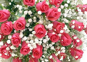 *バラの花束*とってもカワイイピンク!