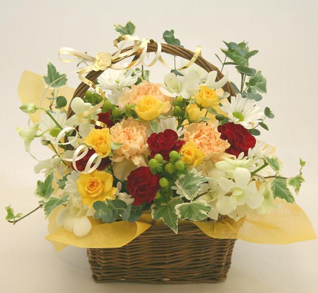 お祝い花●フラワーアレンジメント シャルロット