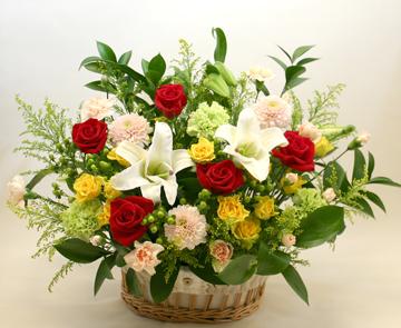 お祝い花●フラワーアレンジメント ローマ