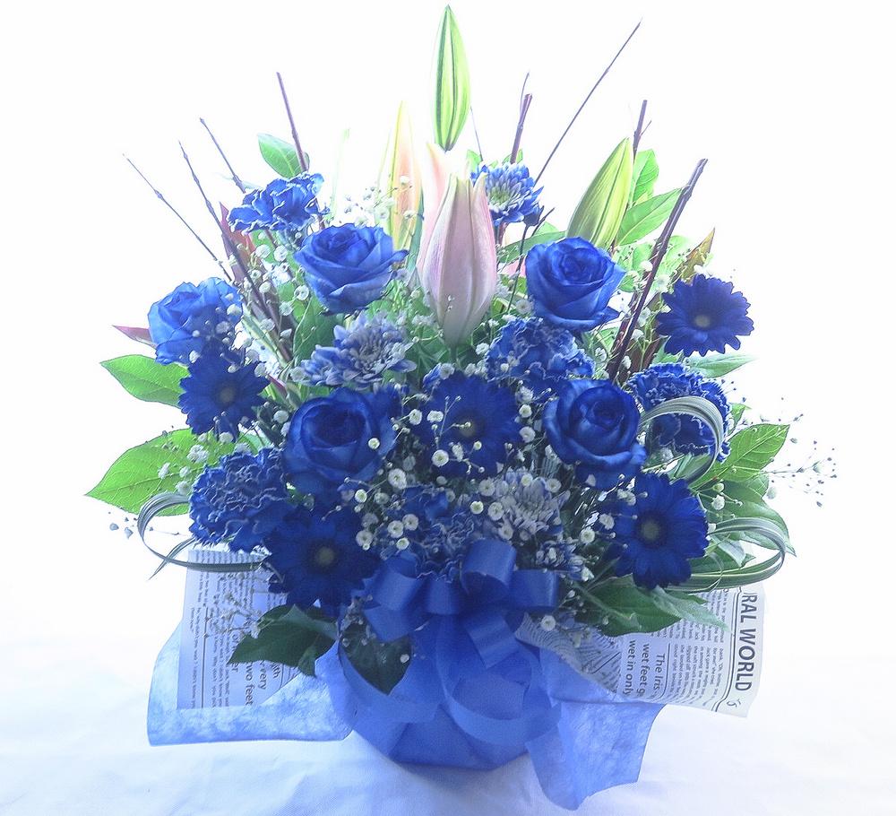 お祝い花 * ブルーロイヤル*