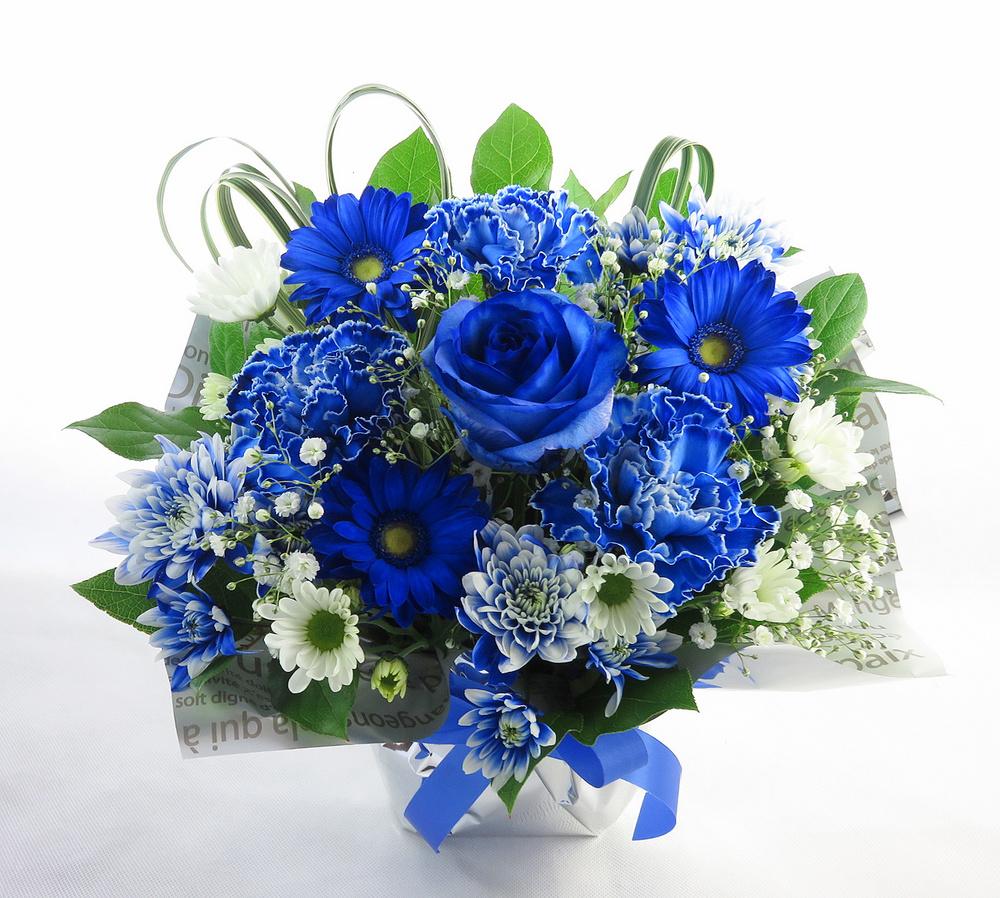 お祝い花 * ブルーヘブン*
